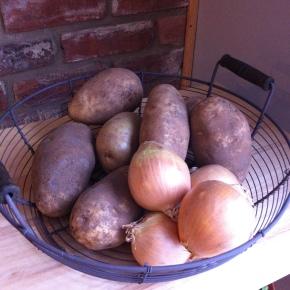 potatoes onions Guinness stew