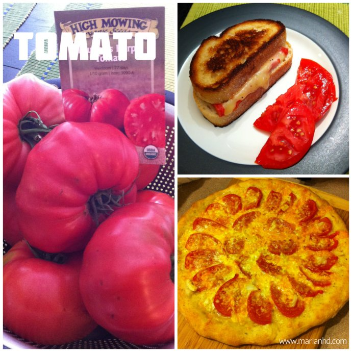 organic tomatoes, for the love of food, garden
