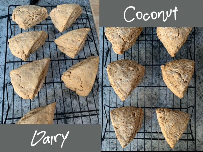 dairy scones vs coconut scones FPIES